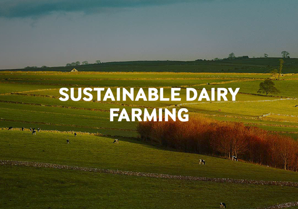 Read about our sustainable farming initiative.
