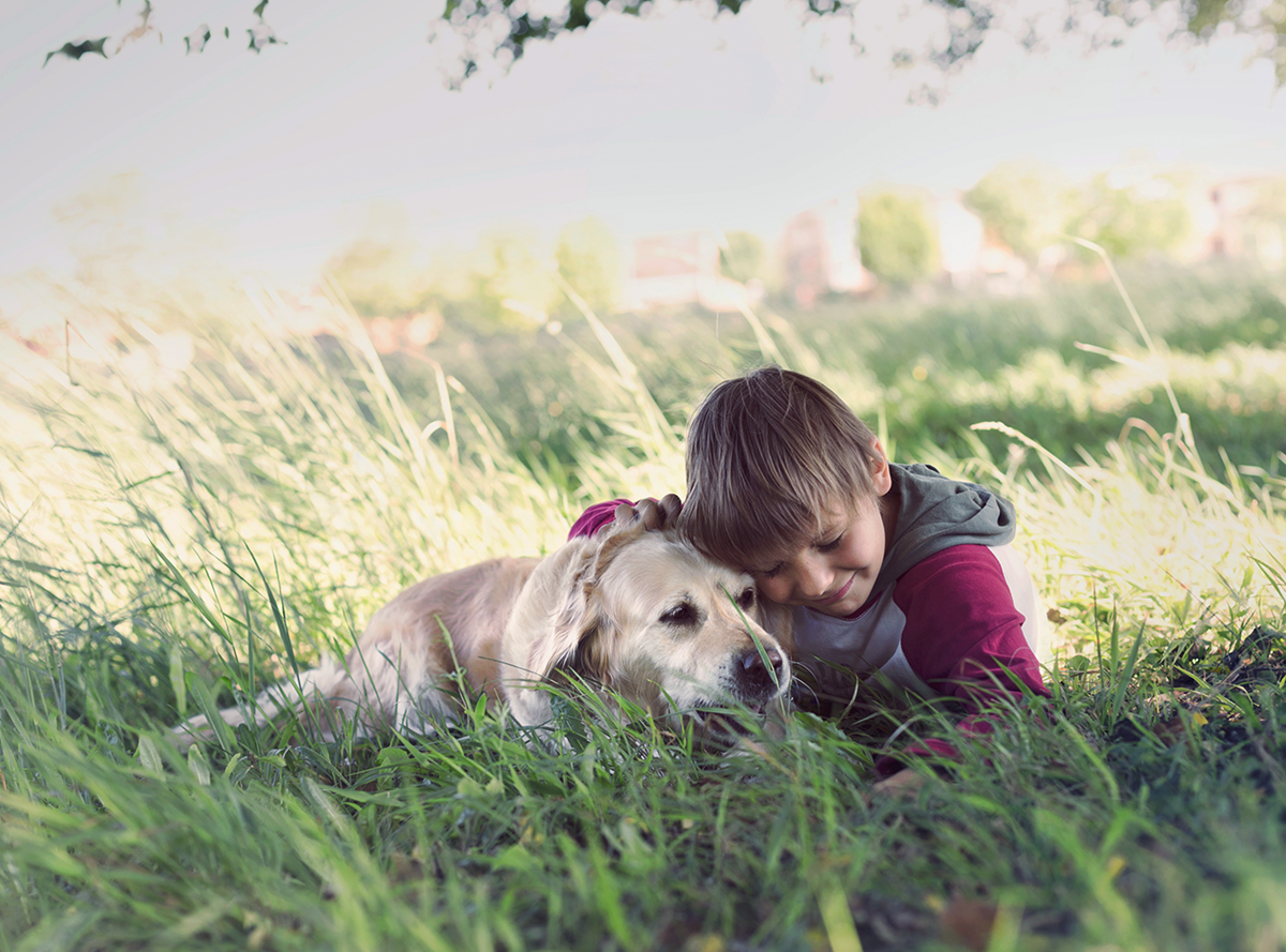 A boy hugging his dog both lying in tall grass