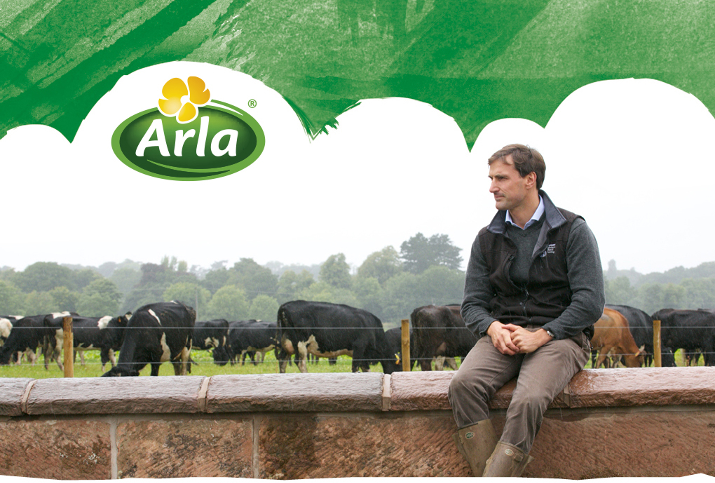 An Arla farmer sat on a wall in front of cows with the Arla logo overlaid on top