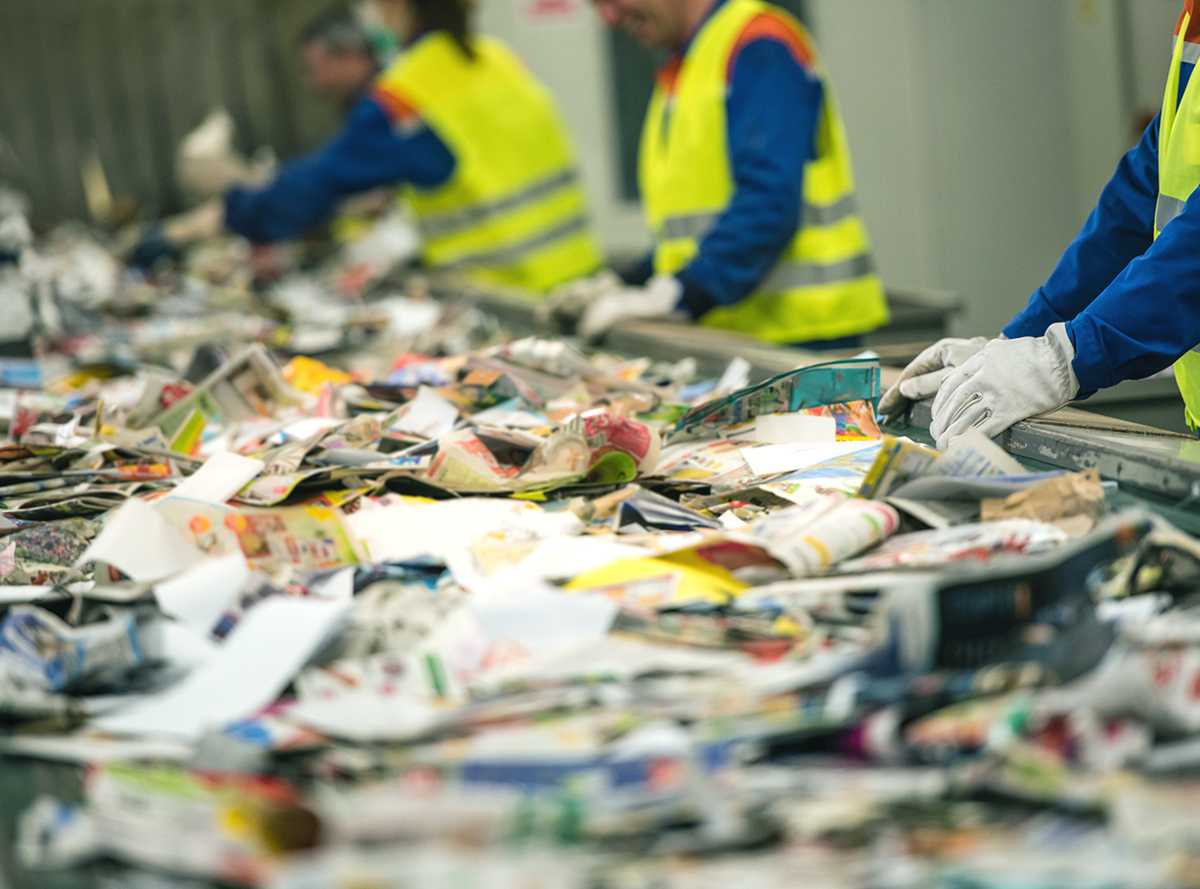The conveyor belt at a recycling plant