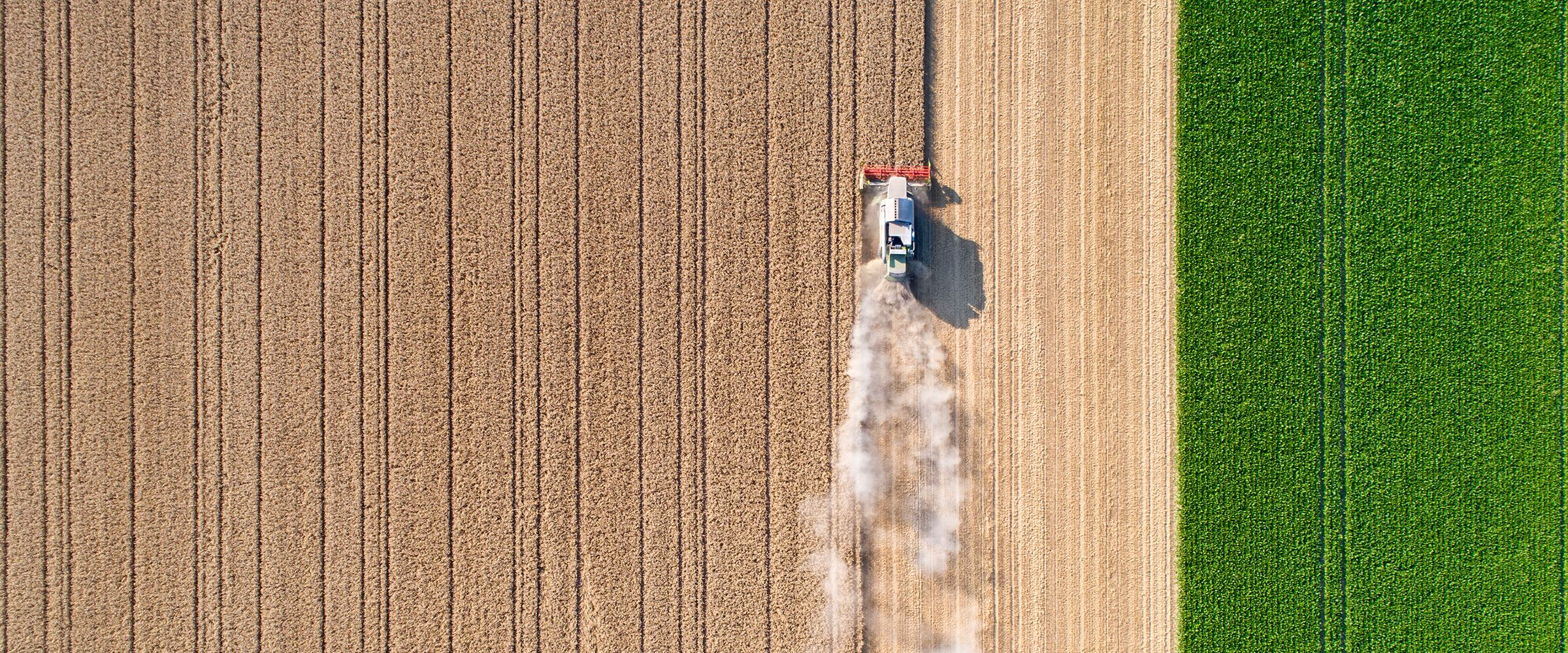 A combine harvester working through a field