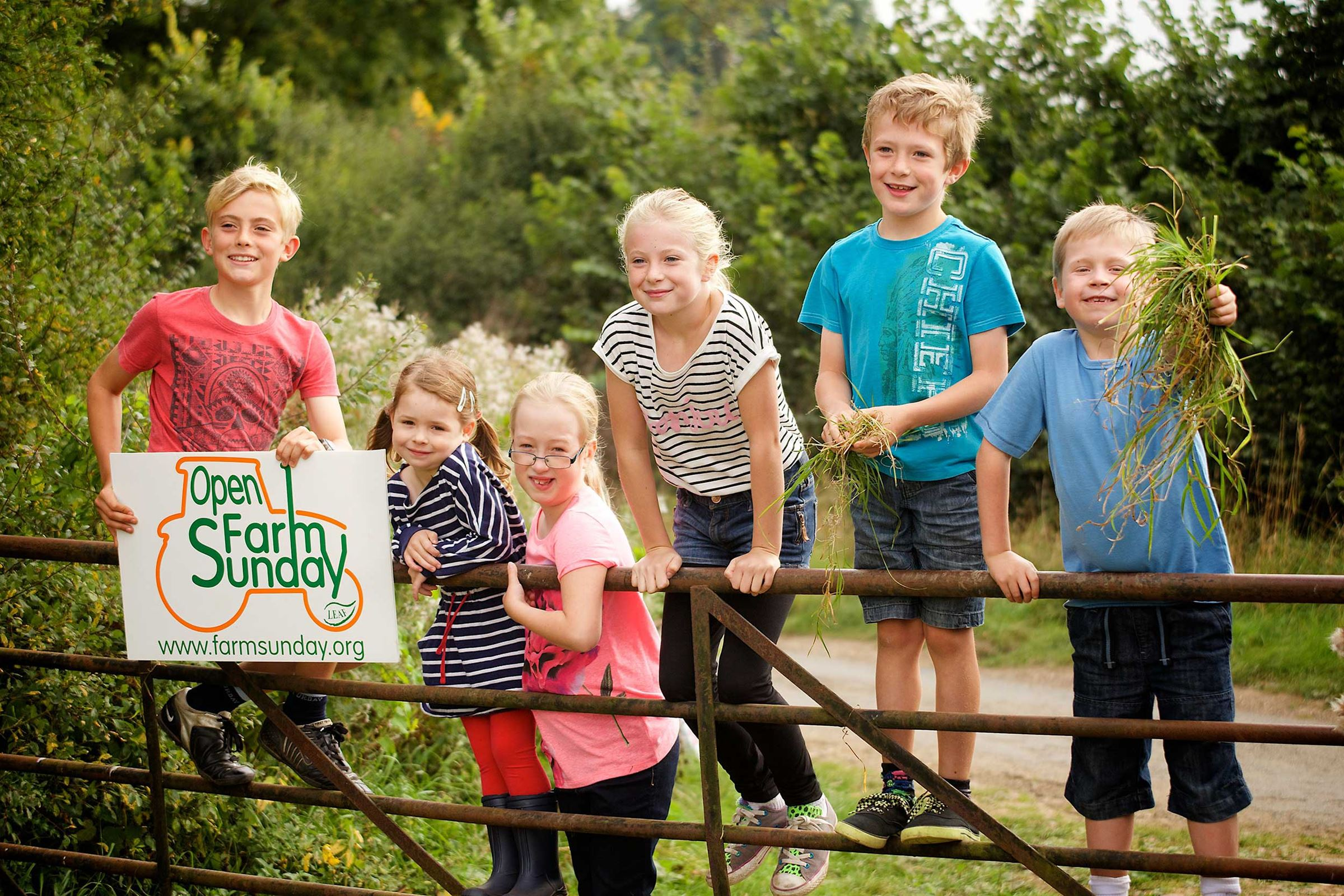 Children standing on farm gate one of whom is holding an Open Farm Sunday sign