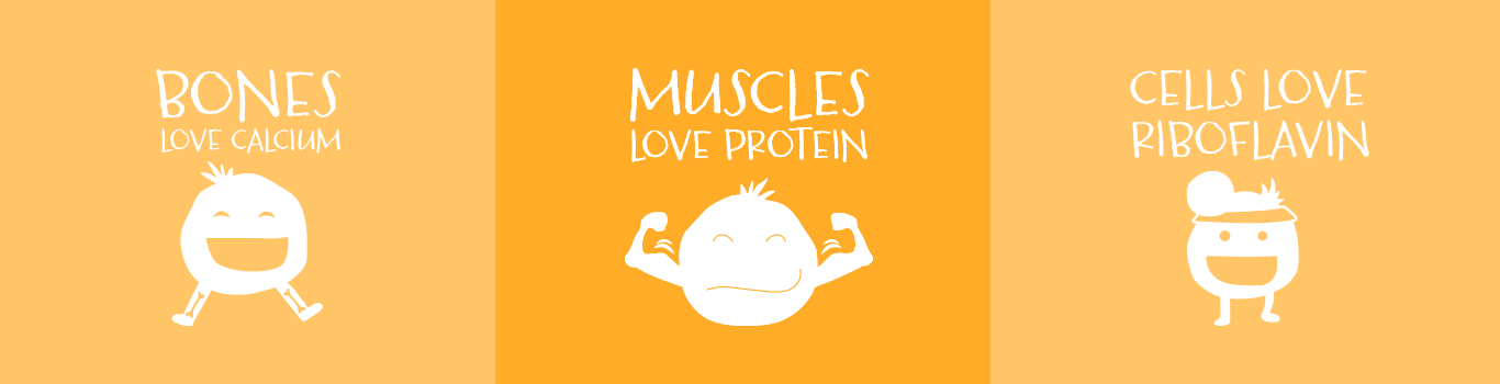 Bones love calcium, muscles love protein, cells love riboflavin.